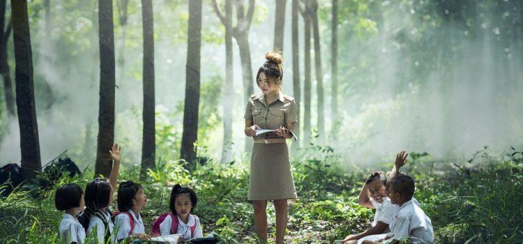 Mulher de pé ensinando crianças sentadas em meio a uma floresta